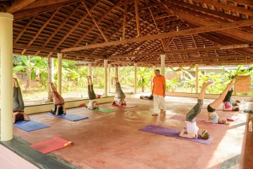 Yoga asana class in beautiful yogahall, at sharanagati yogahaus