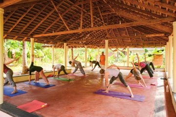 Yoga class, for advanced and beginning students alike
